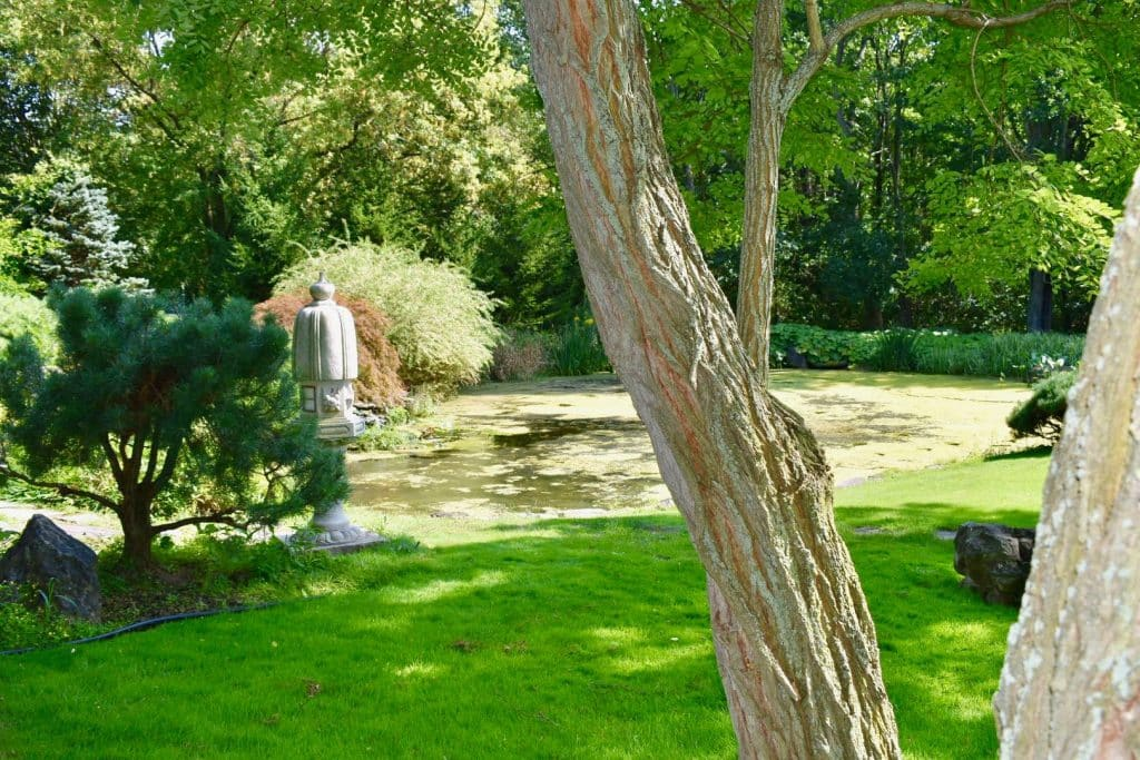 Garden in Rochester
