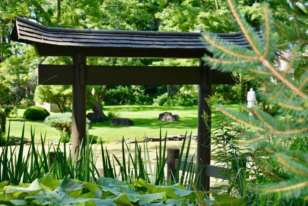 Japanese garden in rochester