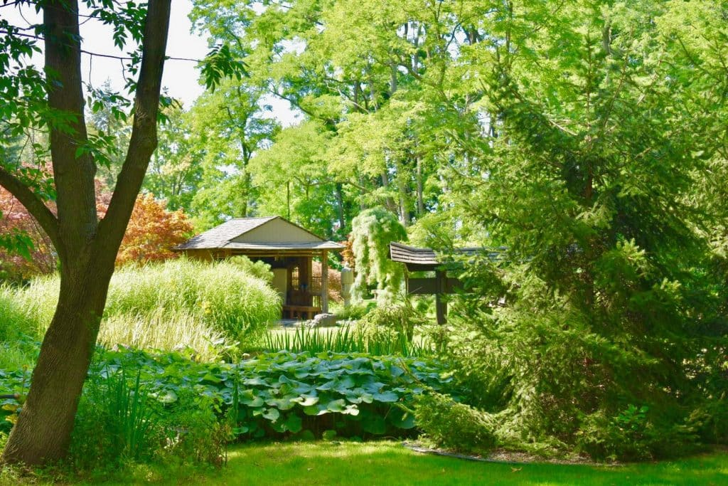 Beautiful Japanese garden in New York