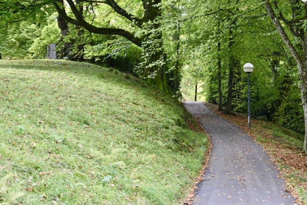 Lichtenaler Allee pathway