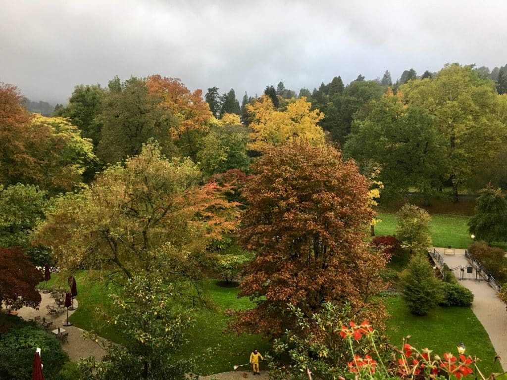 The view from balcony at Brenner's Park- Hotel & Spa with fall colors on trees