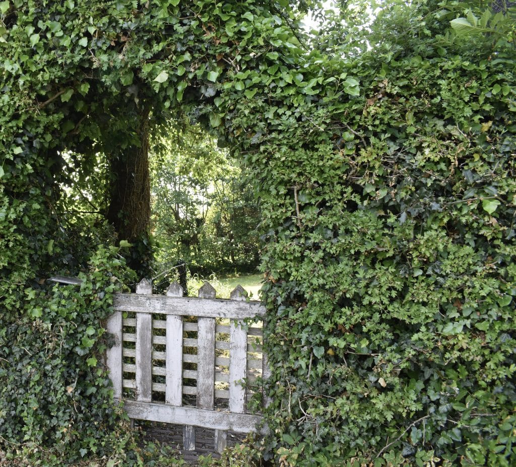 white Gate surrounded by bushes to a private garden in Giethoorn Netherlands