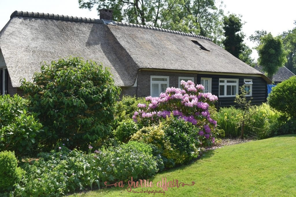 Giethoorn Netherlands thatched roof home with purple flowers