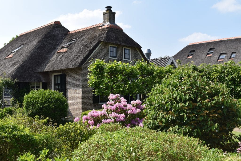 Thatched Roof home in Giethroon with pink flowers in garden