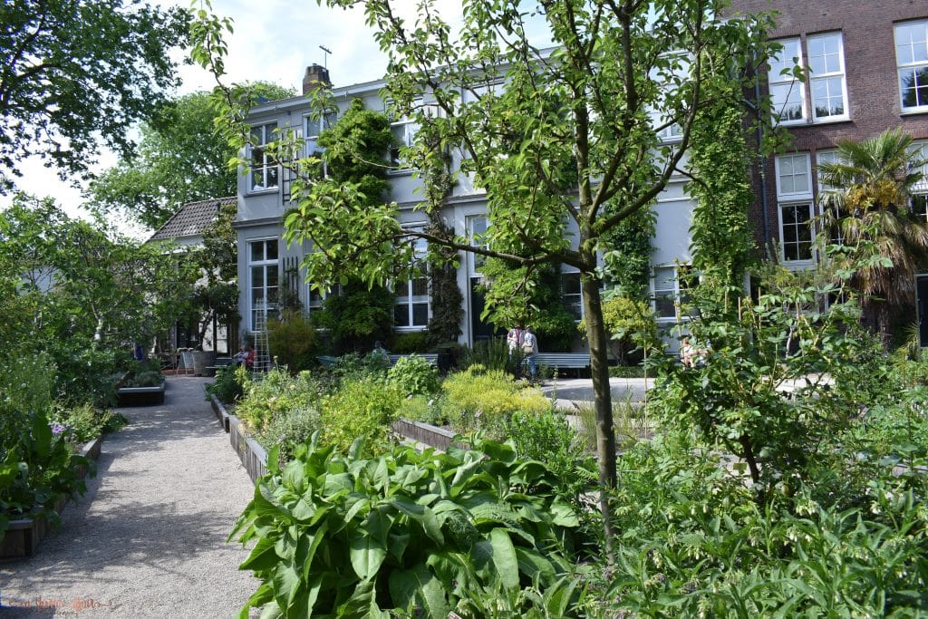 Botanical Pathway to Garden of Amsterdam cafe