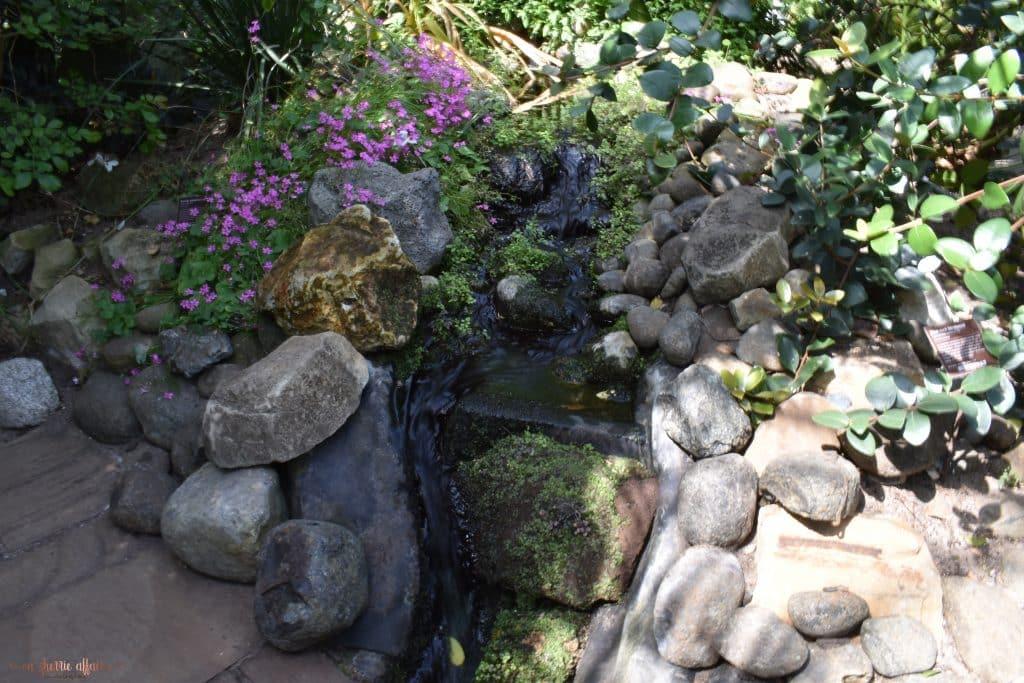 rocky area in garden with purple flowers