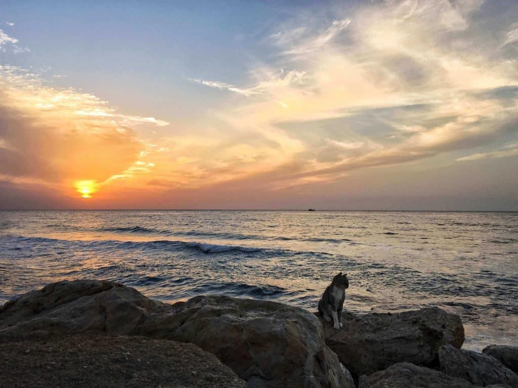 Tel Aviv Romantic Sunset